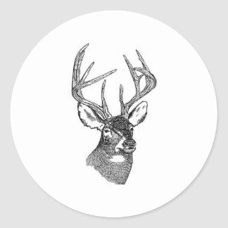 White Tail Deer Trophy Buck Round Sticker
