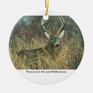 White-tailed Buck Deer Christmas Ornament