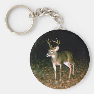 White-tailed Buck Deer Key Ring