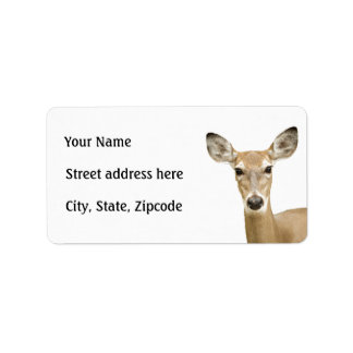 White Tailed Deer Address Label