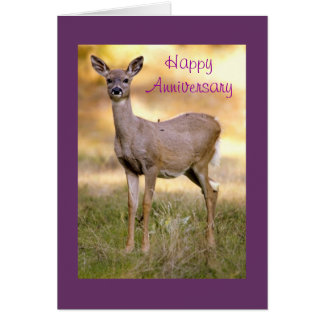 White-tailed Deer, Anniversary Greeting Card