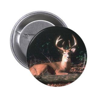 White Tailed Deer  Buck 6 Cm Round Badge