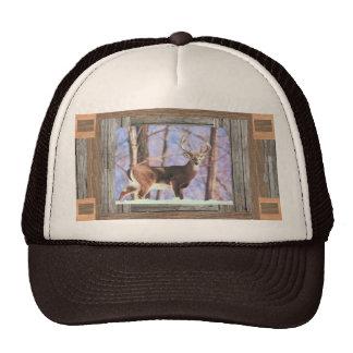 white tailed deer cap