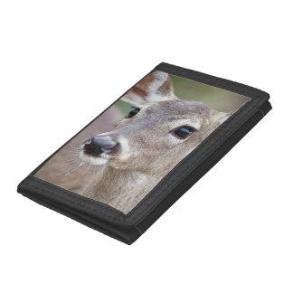 White-tailed Deer doe drinking water Tri-fold Wallet