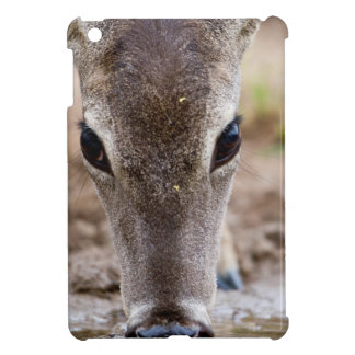 White-tailed Deer drinking water iPad Mini Case