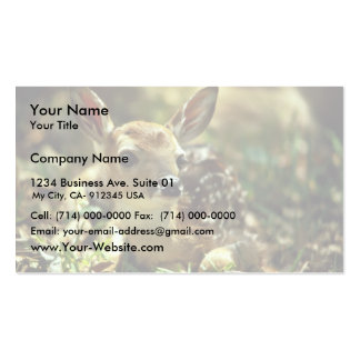 White-tailed Deer Fawn Business Card Template