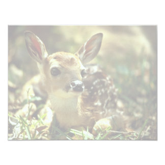 White-tailed Deer Fawn Personalized Announcement