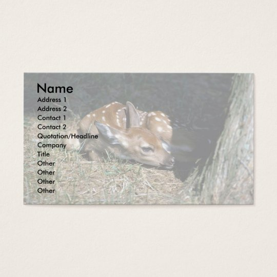 White-tailed Deer-fawn lying by tree Business Card