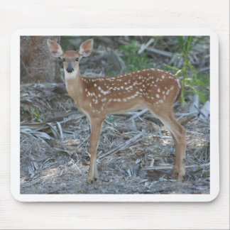 White-Tailed Deer Fawn Mousepad