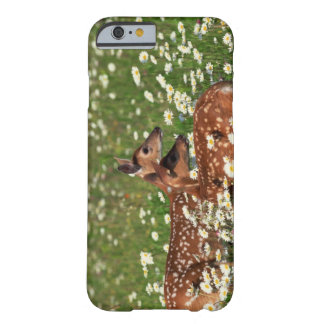 White-tailed deer fawns barely there iPhone 6 case