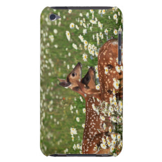 White-tailed deer fawns iPod touch cases