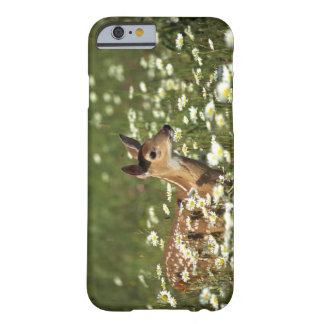 White-tailed deer in field of flowers , barely there iPhone 6 case