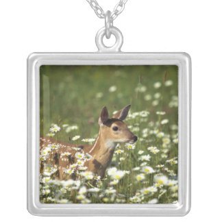 White-tailed deer in field of flowers , silver plated necklace