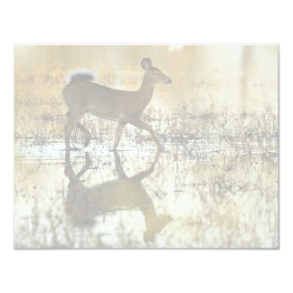 White-tailed deer invitations