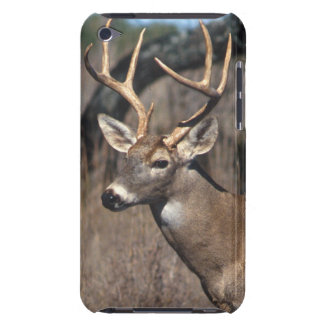 White-Tailed Deer - iPod Touch Cover