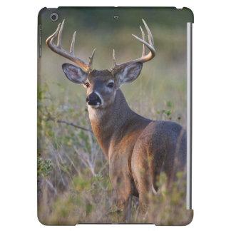 white-tailed deer Odocoileus virginianus) 2 Case For iPad Air