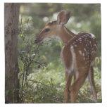 White-tailed Deer, Odocoileus virginianus, 2 Cloth Napkins