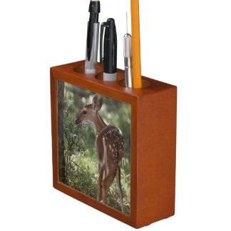 White-tailed Deer, Odocoileus virginianus, 2 Desk Organiser
