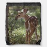 White-tailed Deer, Odocoileus virginianus, 2 Drawstring Bags