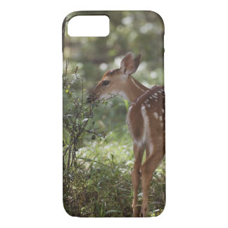 White-tailed Deer, Odocoileus virginianus, 2 iPhone 8/7 Case
