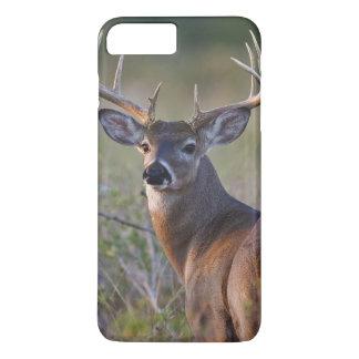 white-tailed deer Odocoileus virginianus) 2 iPhone 8 Plus/7 Plus Case