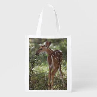 White-tailed Deer, Odocoileus virginianus, 2 Reusable Grocery Bag
