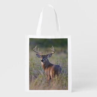 white-tailed deer Odocoileus virginianus) 2 Reusable Grocery Bag