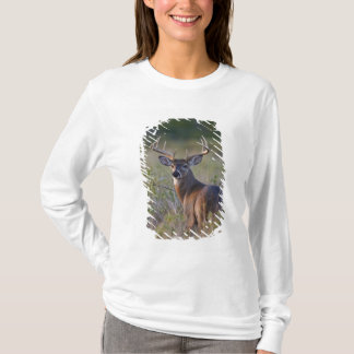 white-tailed deer Odocoileus virginianus) 2 T-Shirt