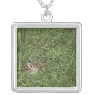 White-tailed Deer, Odocoileus virginianus, 3 Silver Plated Necklace