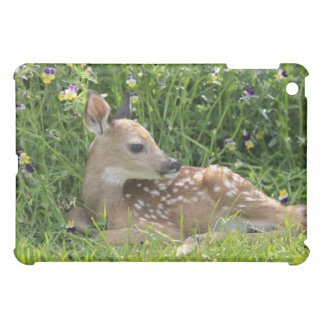 White-tailed deer (Odocoileus virginianus) Cover For The iPad Mini