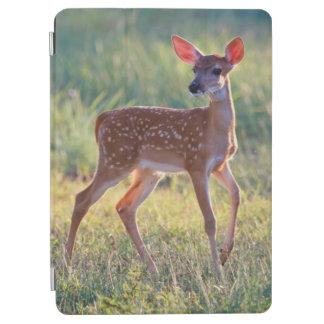 White-Tailed Deer (Odocoileus Virginianus) Fawn iPad Air Cover