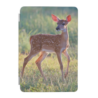 White-Tailed Deer (Odocoileus Virginianus) Fawn iPad Mini Cover