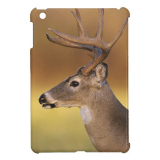 White-tailed Deer, Odocoileus virginianus, iPad Mini Case
