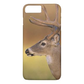 White-tailed Deer, Odocoileus virginianus, iPhone 8 Plus/7 Plus Case