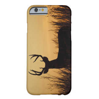 white-tailed deer (Odocoileus virginianus) male Barely There iPhone 6 Case