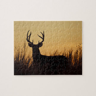 white-tailed deer (Odocoileus virginianus) male Jigsaw Puzzle
