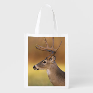 White-tailed Deer, Odocoileus virginianus, Reusable Grocery Bag