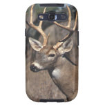 White-Tailed Deer - Samsung Galaxy S Cover Samsung Galaxy SIII Cases