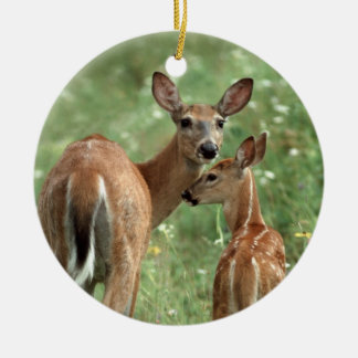 White-tailed Deer with Her Fawn Christmas Ornament