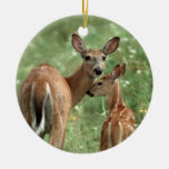 White-tailed Deer with Her Fawn Christmas Tree Ornaments