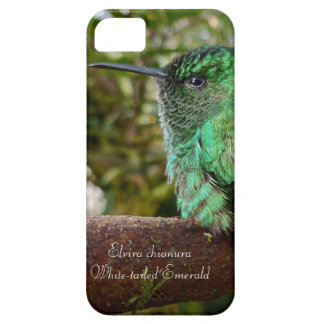 White-tailed Emerald iPhone 5 Covers