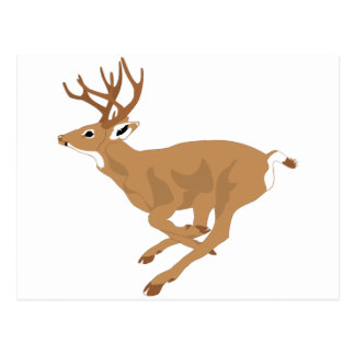 White-Tailed Male Deer (Buck) Running/Galloping Postcard