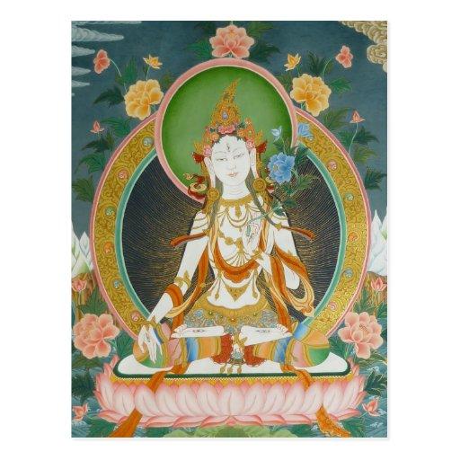 White Tara Postcard