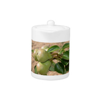 White Tea Pot with Pears on Tree