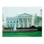 White The White House, Washington, D.C., U.S.A. fl Postcard