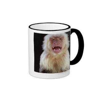White-throated capuchin (Cebus capucinus) Ringer Mug
