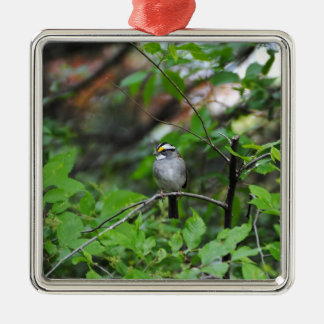 White Throated Sparrow Silver-Colored Square Decoration