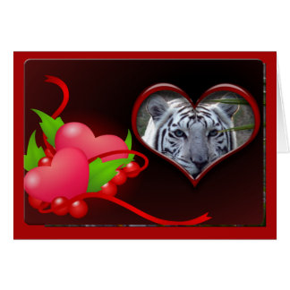 white-tiger-00102-65x45 card