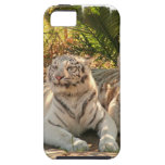 white-tiger-26.jpg iPhone 5 cases