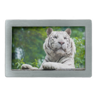 White Tiger belt buckle